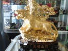 Cọp vàng trên núi H351G