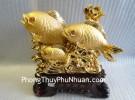 Cá chép vàng kim H296G