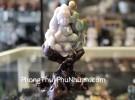 Tiểu Phật ngồi trên hoa sen Phỉ Thúy NS120