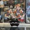 Cây thạch anh lục sắc thân bonsai chậu kiểu nhật mới (Phước) KC117