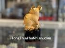 Chuột vàng đế đen TM025