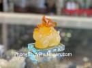 Chuột ngọc vàng cam TM036