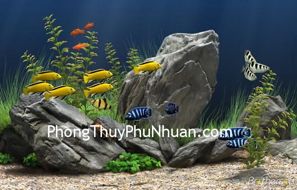 Hồ cá nhỏ tăng cường cung quan lộc