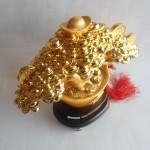 cay tai loc H511G 3 150x150 Cây nén vàng chiêu tài H511G