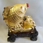 ca chep H300G 2 150x150 Cá chép trên đỉnh vàng H300G