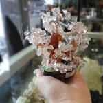 cay tai loc kc061 5 150x150 Cây đá thạch anh trắng siêu nhỏ KC061
