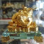 DSC07420 150x150 Thiềm thừ vàng nhỏ K149M