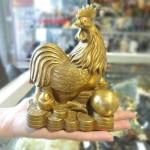 DSC07443 150x150 Gà đồng trên đống vàng D246