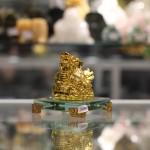 c089a long quy vang 1 150x150 Long quy vàng trên tiền C089A