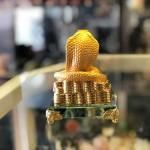 H436G ran vang 3 150x150 Rắn vàng châu đỏ H436G