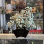 KC119 cay dong linh dang bonsai 2 150x150 Cây đông linh thân bonsai chậu kiểu nhật mới (Phước) KC119