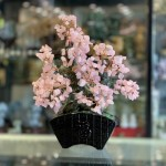 KC120 cay thach anh hong dang bonsai 3 150x150 Cây thạch anh hồng thân bonsai chậu kiểu nhật mới (Phước) KC120