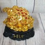 ln102 coc vang lung diem ngoc 150x150 Thiềm thừ vàng lưng điểm hồng ngọc trên bụi sen LN102